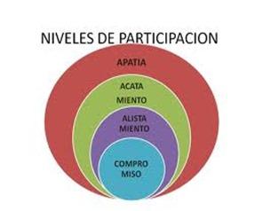 niveles de participacion