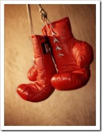 guantes de boxe